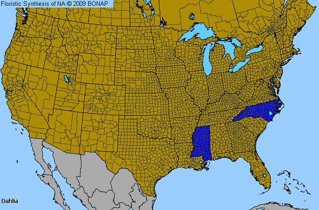 Dahlia Dahlia Genus Level Details Allergy Info - Allergy in us map
