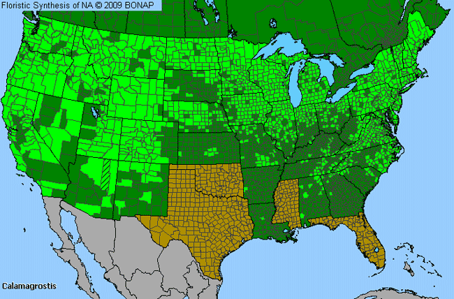 Allergies By County Map For Reed Grass