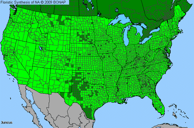 Allergies By County Map For Rush