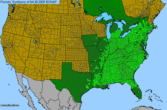 Allergies By County Map For Tuliptree