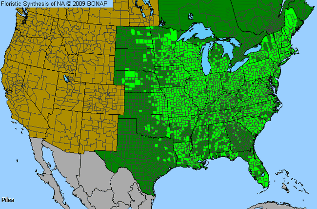 Allergies By County Map For Clearweed