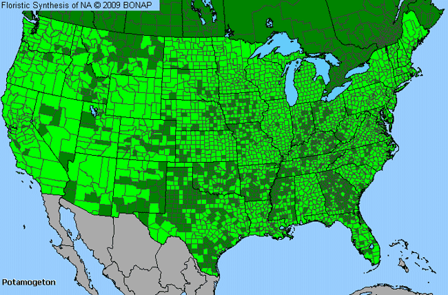 Allergies By County Map For Pondweed