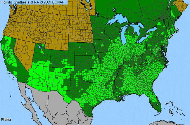 Allergies By County Map For Hoptree
