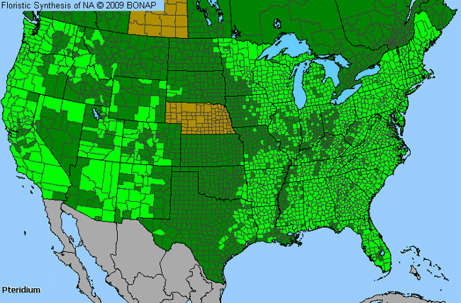 Allergies By County Map For Bracken Fern