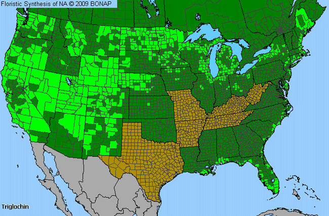Allergies By County Map For Arrow-Grass