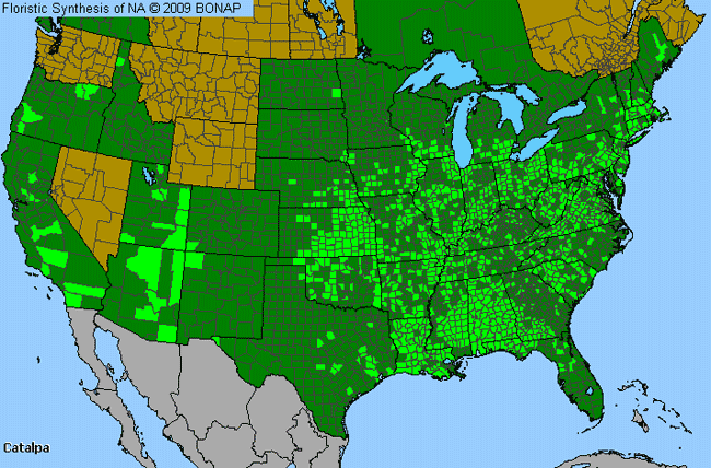 Allergies By County Map For Catalpa