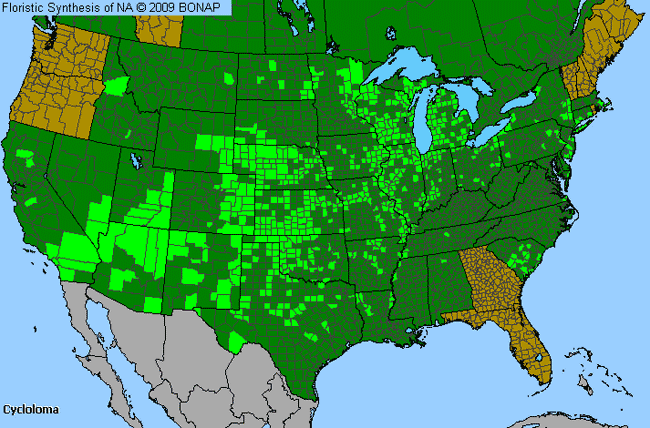 Allergies By County Map For Winged-Pigweed