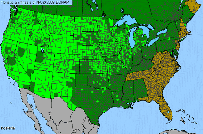 Allergies By County Map For Koeler's Grass