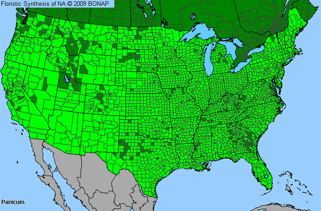 Allergies By County Map For Panic Grass