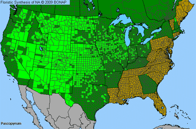 Allergies By County Map For Western-Wheat Grass