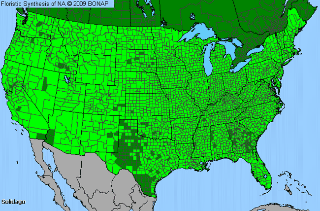 Allergies By County Map For Goldenrod