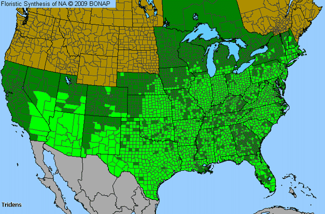 Allergies By County Map For Fluff Grass
