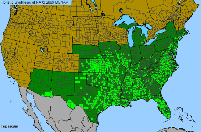 Allergies By County Map For Mock Grama