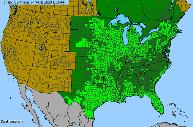 Allergies By County Map For Hercules'-Club, Prickly-Ash, Toothachetree