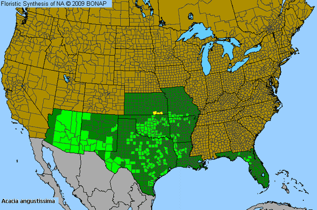 Allergies By County Map For Prairie Wattle