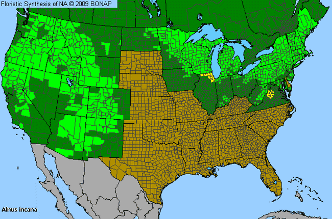 Allergies By County Map For Speckled Alder