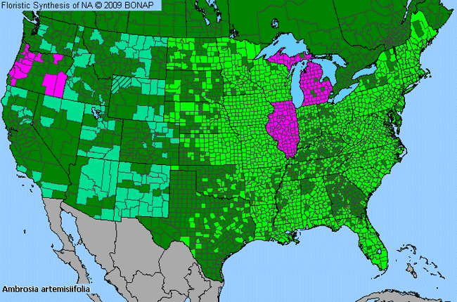 Allergies By County Map For Annual Ragweed