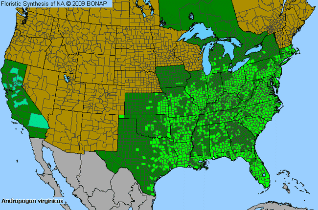 Allergies By County Map For Broom-Sedge
