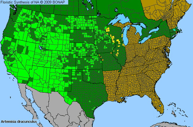 Allergies By County Map For Dragon Wormwood