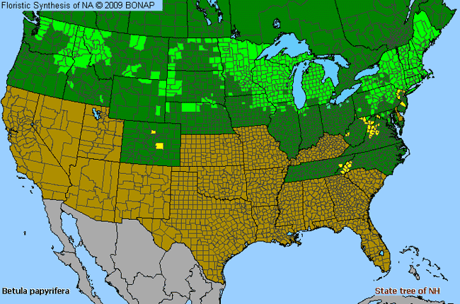 Allergies By County Map For Paper Birch