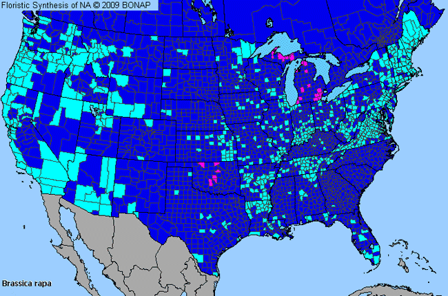 Allergies By County Map For Rape