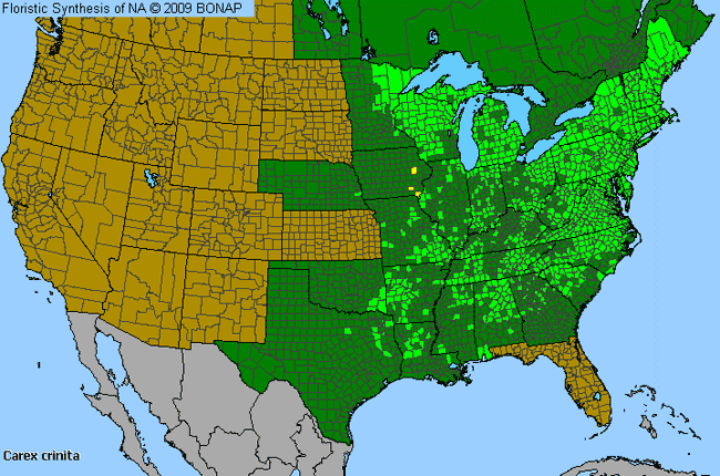 Allergies By County Map For Fringed Sedge