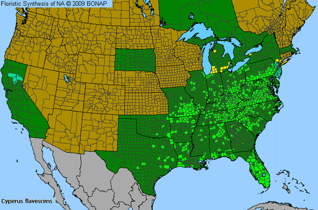 Allergies By County Map For Yellow Flat Sedge