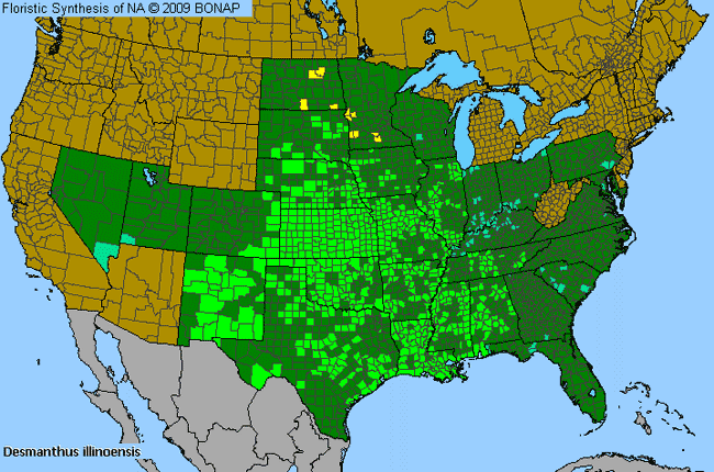 Allergies By County Map For Prairie Bundle-Flower