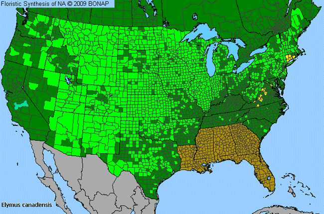 Allergies By County Map For Nodding Wild Rye