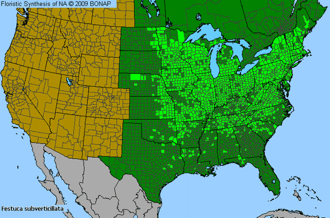 Allergies By County Map For Nodding Fescue