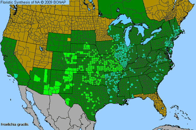 Allergies By County Map For Slender Snake-Cotton