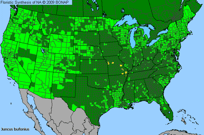 Allergies By County Map For Toad Rush