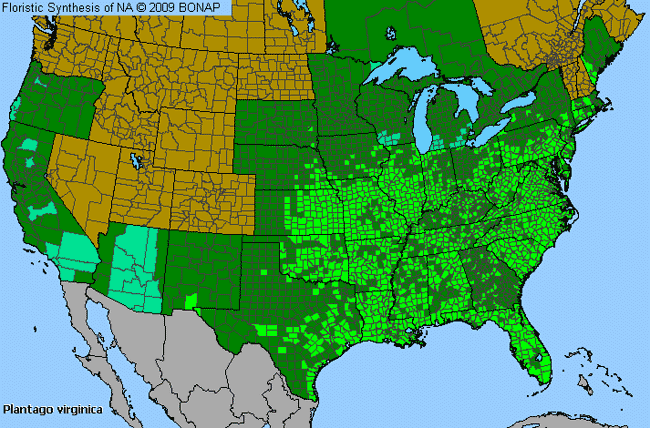Allergies By County Map For Pale-Seed Plantain