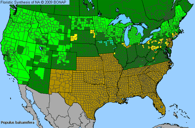 Allergies By County Map For Balsam Poplar