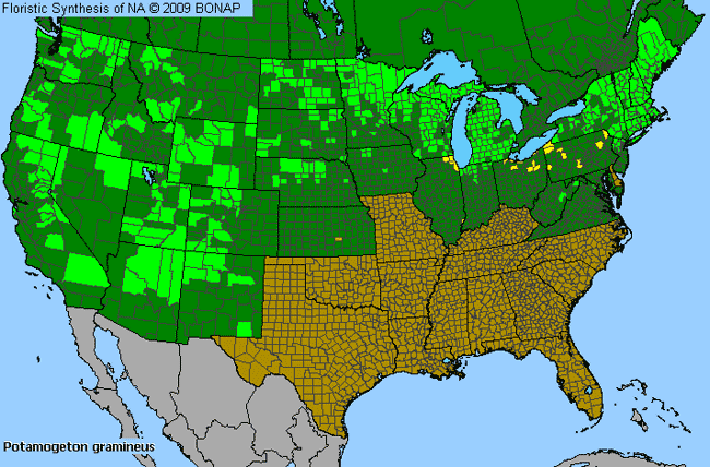 Allergies By County Map For Grassy Pondweed