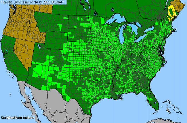Allergies By County Map For Yellow Indian Grass