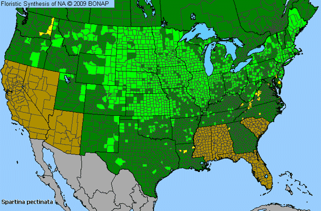 Allergies By County Map For Freshwater Cord Grass
