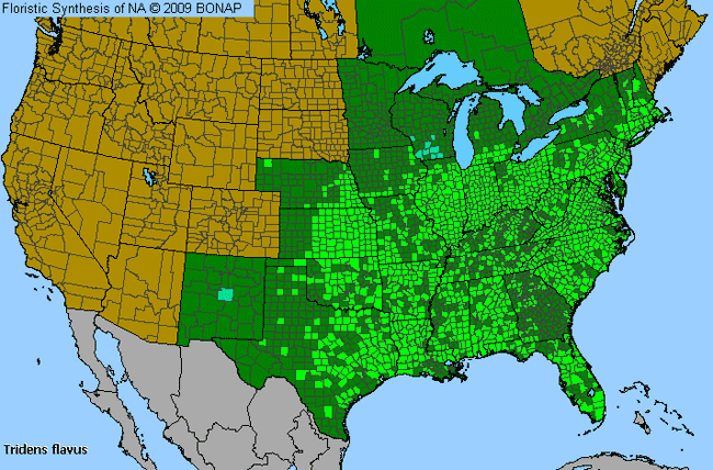 Allergies By County Map For Tall Redtop