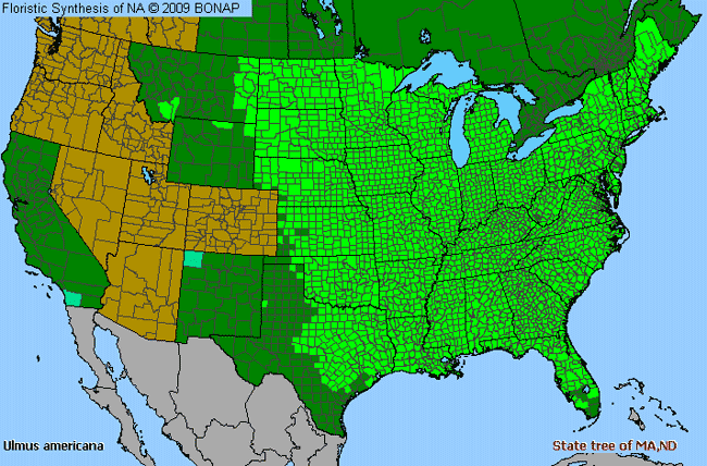 Allergies By County Map For American Elm