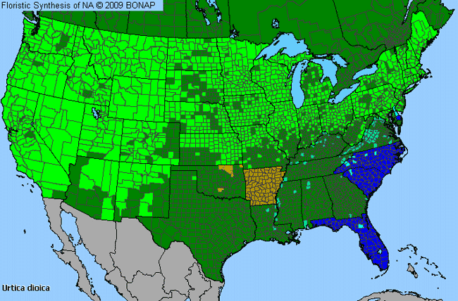 Allergies By County Map For Stinging Nettle