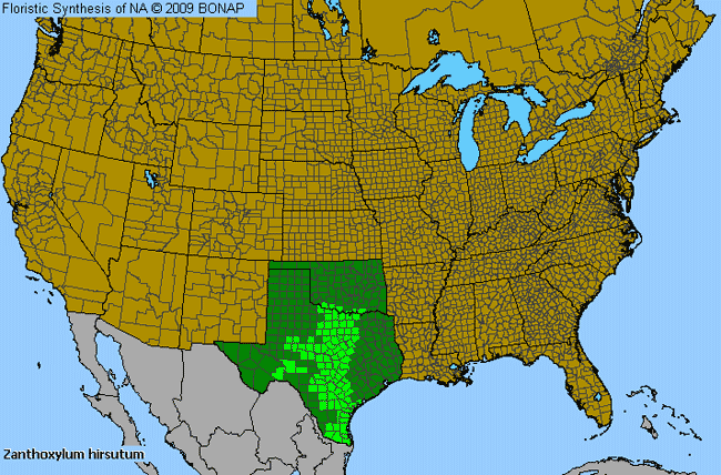 Allergies By County Map For Texas Hercules'-Club
