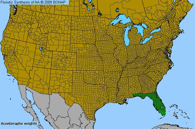 Everglades Palm Acoelorraphe Wrightii Species Details And - Everglades on us map