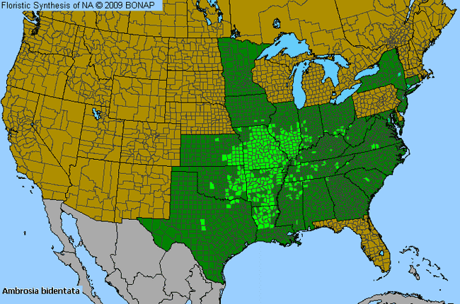 allergies by county map for lance leaf ragweed