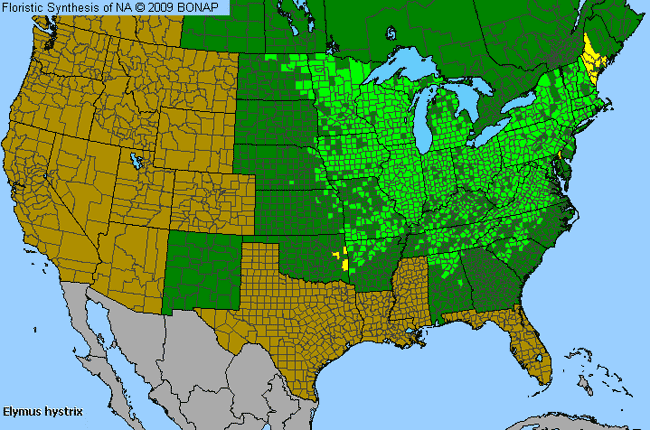 Allergies By County Map For Eastern Bottle-Brush Grass
