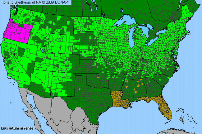 Allergies By County Map For Field Horsetail