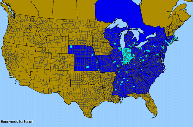 Allergies By County Map For Winter-Creeper