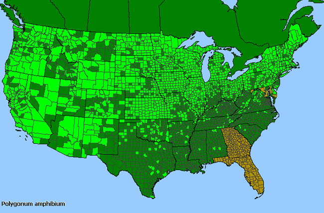 Allergies By County Map For Water Smartweed