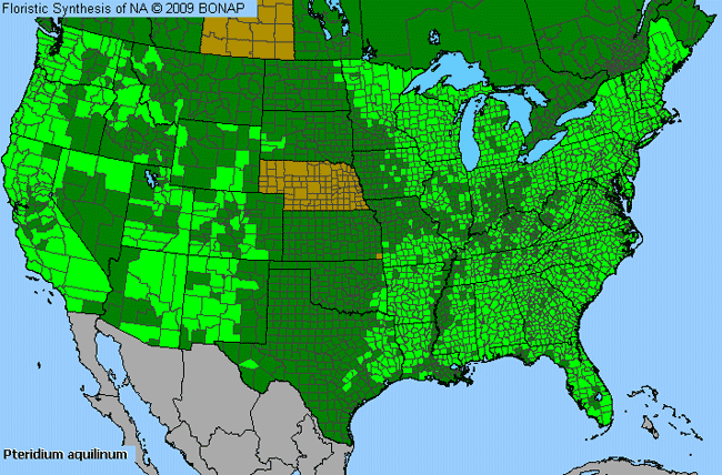 Allergies By County Map For Northern Bracken Fern