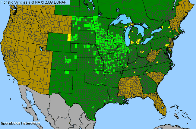 Allergies By County Map For Prairie Dropseed